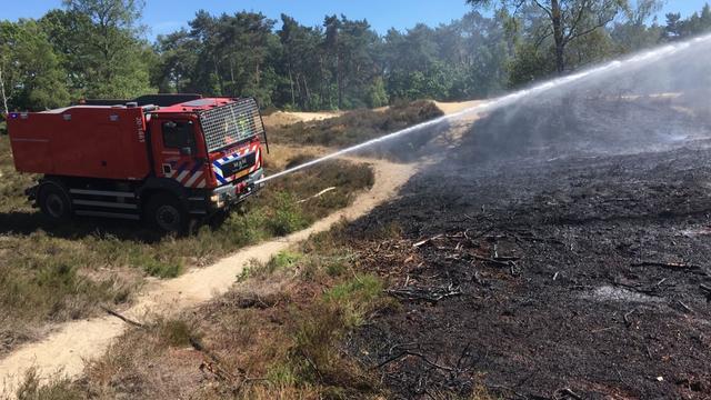 Heidebrand verwoest groot oppervlak in Bergen op Zoom