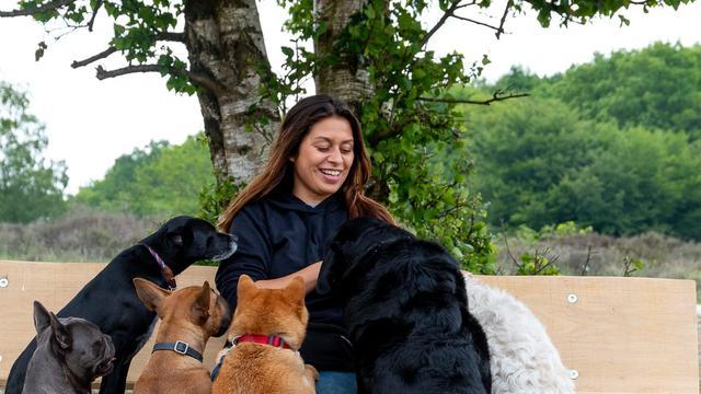 Hondenuitlater: 'Een uitlaatservice is voor honden een sociale leerschool'