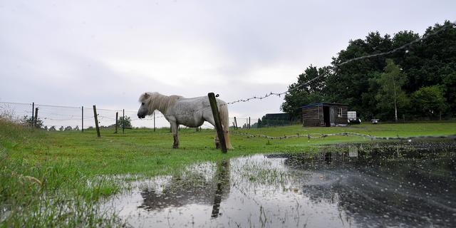 Weerbericht: Bewolkte grijze dag met hier en daar wat regen