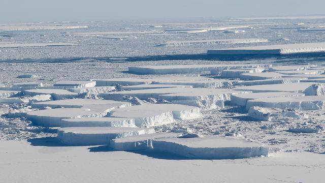 Noordpoolijs snel achteruit: In 40 jaar is bijna drie kwart verdwenen