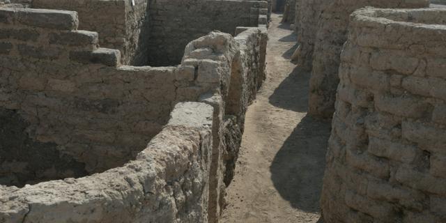 Goed nieuws: Faraostad ontdekt in Egypte | Keukenhof weer beperkt open