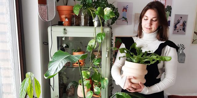 Zes tips om je planten in leven te houden tijdens een vakantie