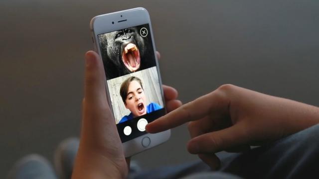Apple en ontwikkelaars gaan app-opbrengst aan WNF doneren