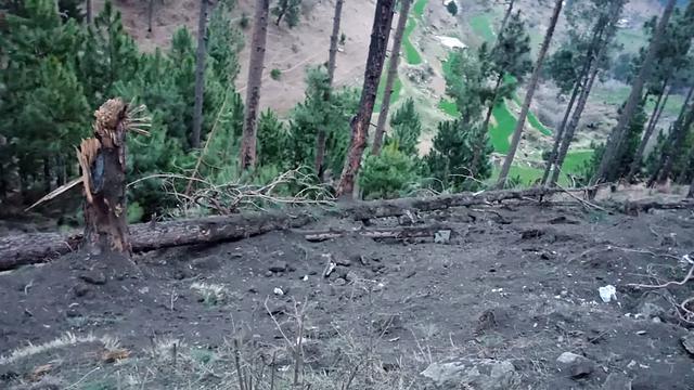 India voert luchtaanvallen uit op kampen van militanten in Pakistan