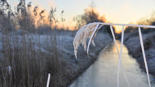 Voor het eerst deze winter strenge vorst gemeten