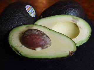 Museum 'belicht alle aspecten van de avocado'