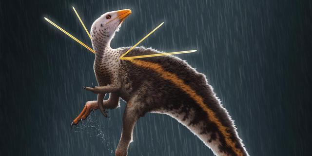 'Flamboyante' dinosaurus met nooit eerder ontdekte 'versieringen' gevonden