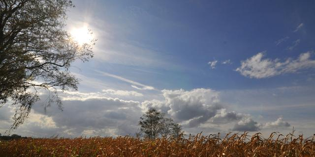 Weerbericht: In het noorden en westen bewolkt, in het zuiden meer zon