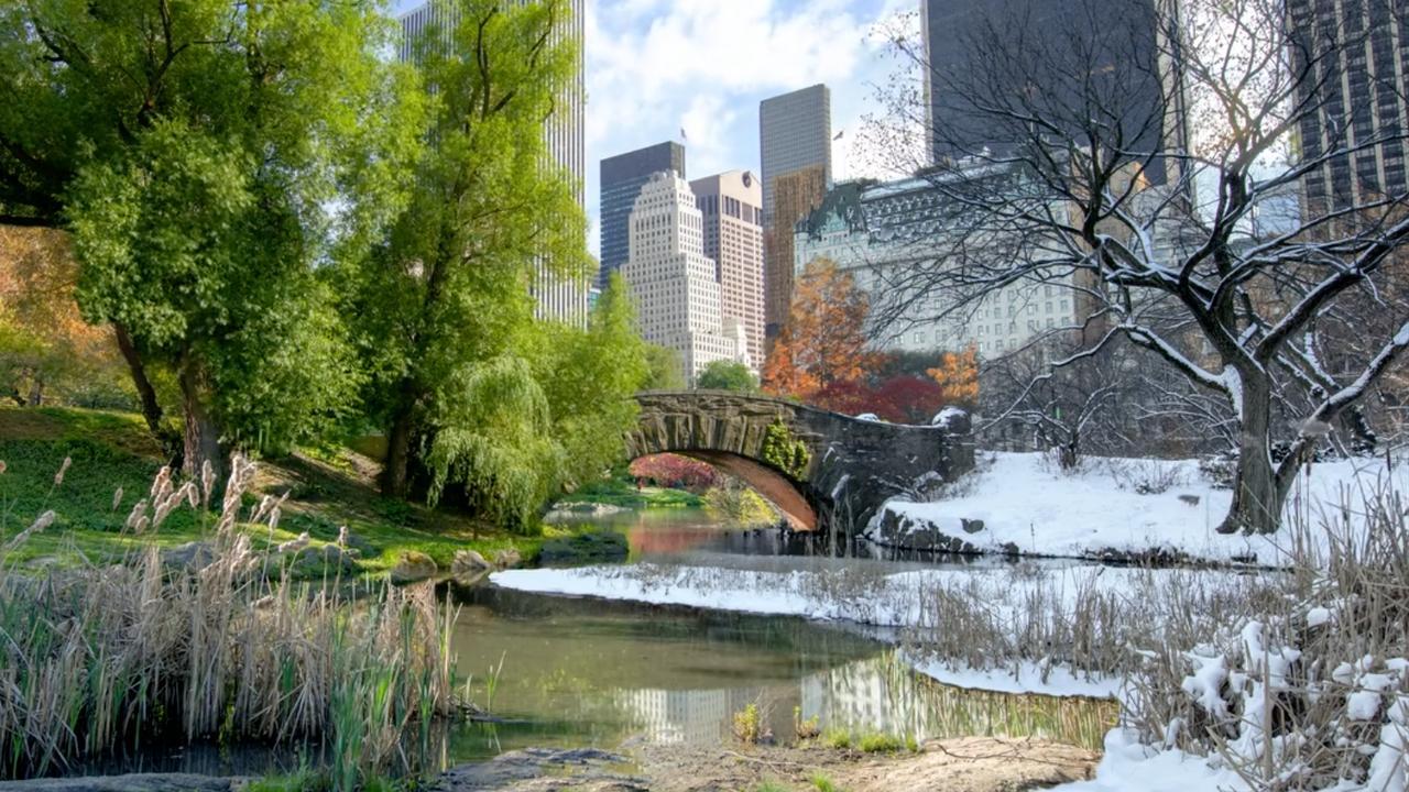 Fotograaf maakt timelapse van wisselende seizoenen in New York