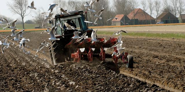 Nederlandse landbouwexport ligt op koers voor nieuw record