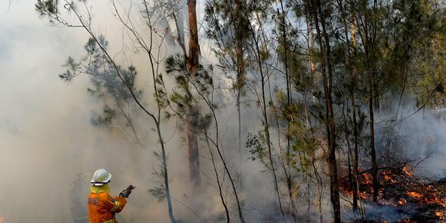 Ook het toerisme in Australië lijdt onder de bosbranden