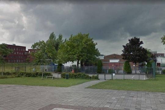 'Basisschoolleerlingen willen voetbalveld in Dichterswijk behouden'