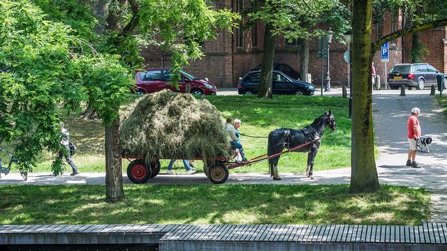 Utrecht gaat met paard en wagen 60 jaar terug in de tijd