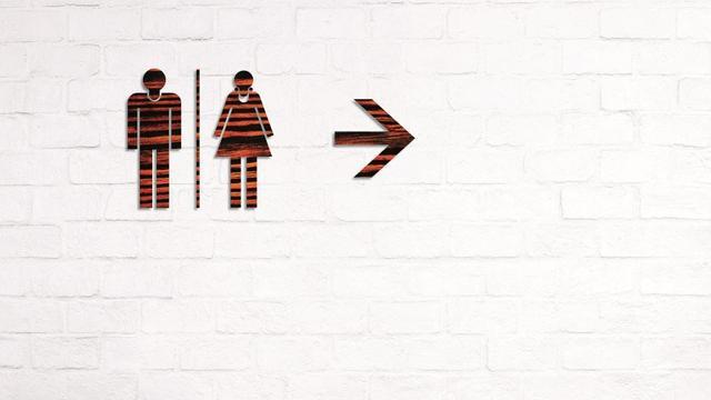 Haarlem zegt maatregelen toe voor toegankelijkheid openbare toiletten