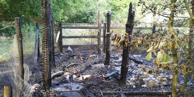 Imkersvereniging Place to Bee getroffen door brand tijdens 112-storing