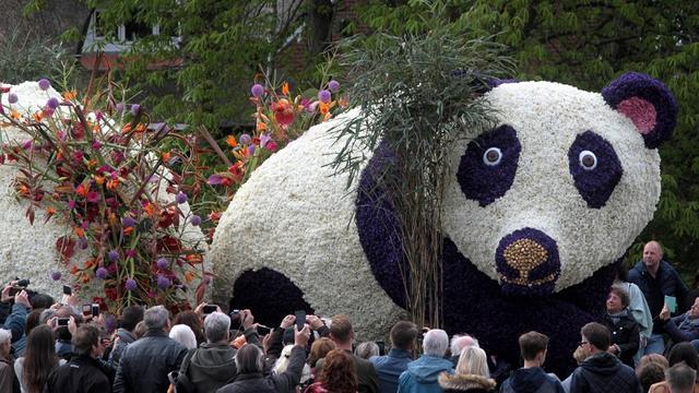 Miljoen mensen zien jaarlijkse Bloemencorso Bollenstreek