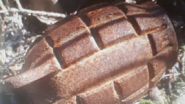Handgranaat gevonden in Noord-Brabantse plaats St Willebrord