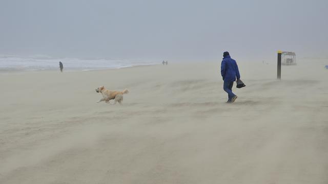 Stranden krijgen opruimbeurt met Expeditie Juttersgeluk