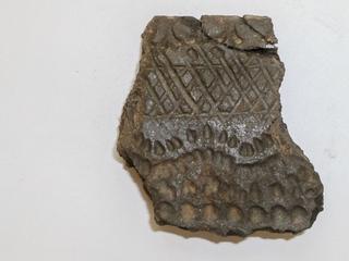 Plantresten gevonden op opgegraven aardewerk uit Libië
