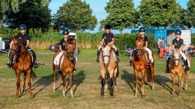 Paardensportvereniging Nispen viert 40-jarig jubileum