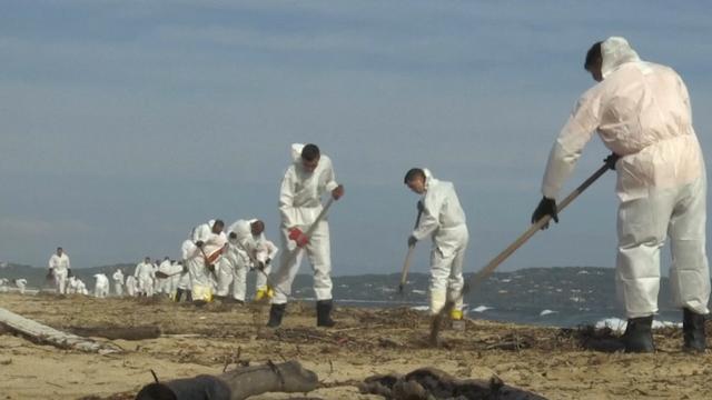Frankrijk ruimt olie op van stranden Côte d'Azur na botsing schepen