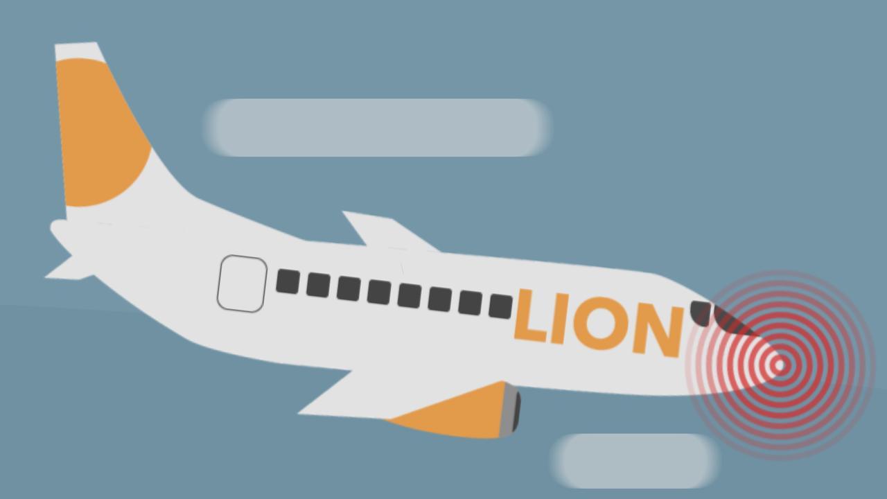 Waardoor de Boeing 737 MAX-vliegtuigen kunnen neerstorten