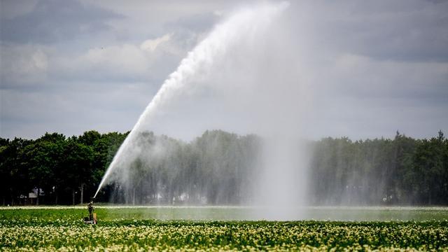 Sproeiverbod in het oosten vanwege droogte en lage waterstanden