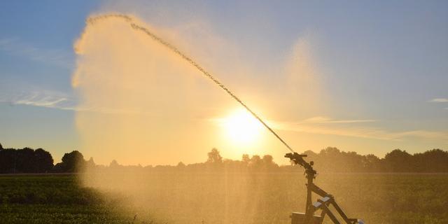 Waterschap De Dommel verbiedt beregenen grasland tot 1 juni