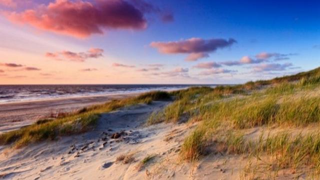 Hollandse Duinen mooiste natuurgebied van Nederland