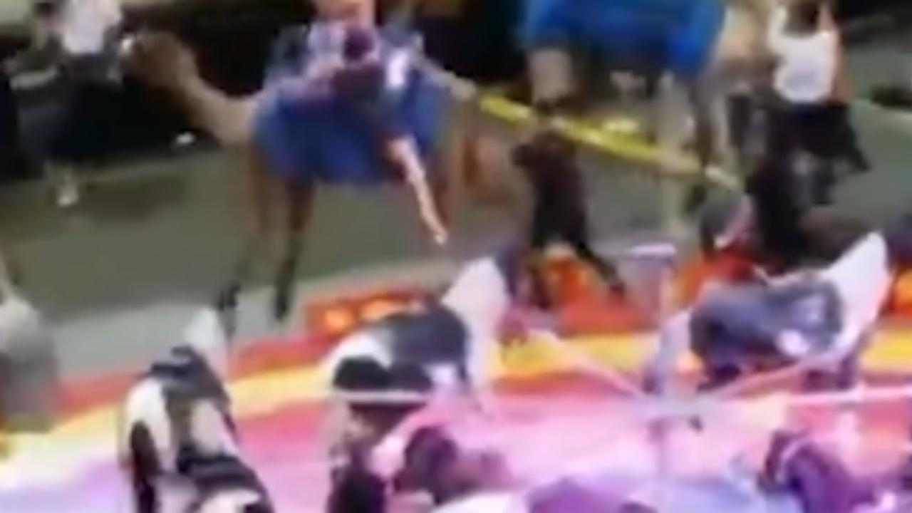 Kameel slaat op hol in circus Pittsburgh