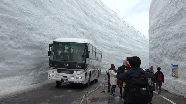 Bussen rijden door kloof van sneeuw in Japan