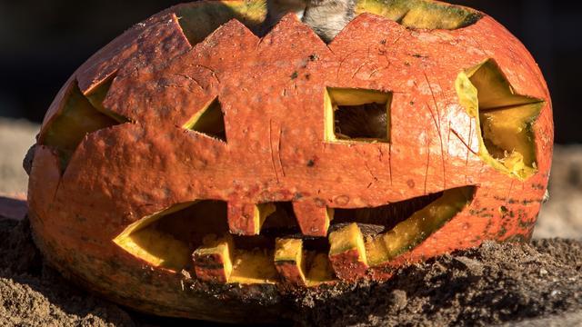 Halloweentocht trekt dit jaar weer terug naar Alphen aan den Rijn