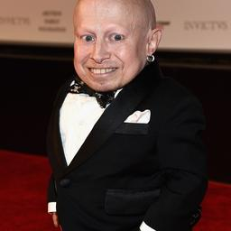 Austin Powers-acteur Verne Troyer (49) overleden