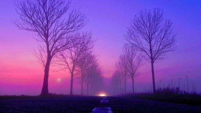 Even code geel wegens mist in Oost-Nederland