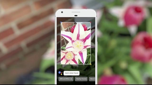 Google rolt Lens-functie uit voor alle Android-gebruikers