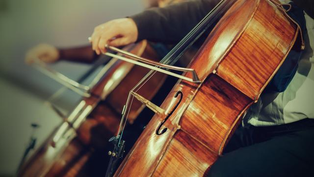 Harmonie Arti organiseert galaconcert voor 110-jarig bestaan
