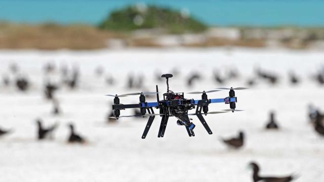 Kleine drones populairder in Nederland