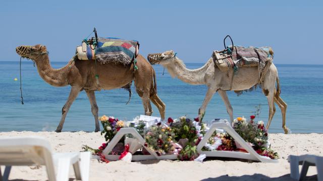 Britse reisorganisaties schrappen boekingen naar Tunesië