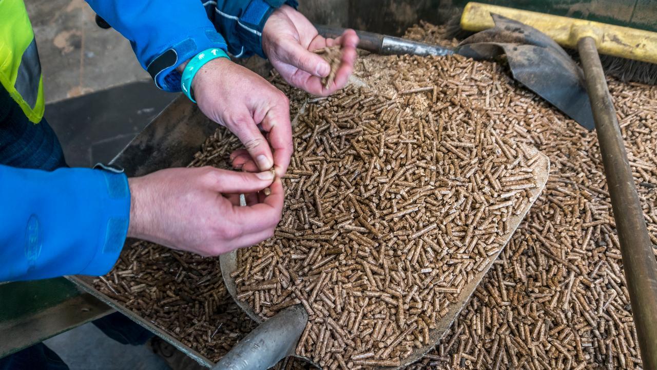 Stoppen met biomassa brengt klimaatdoelen in gevaar