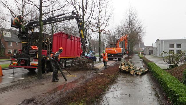 Actiecomité Schoonhout Etten-Leur zakt moed in de schoenen
