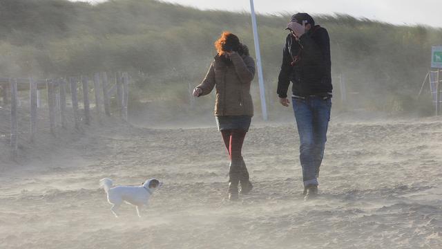 Waarschuwing voor zware windstoten in kustprovincies