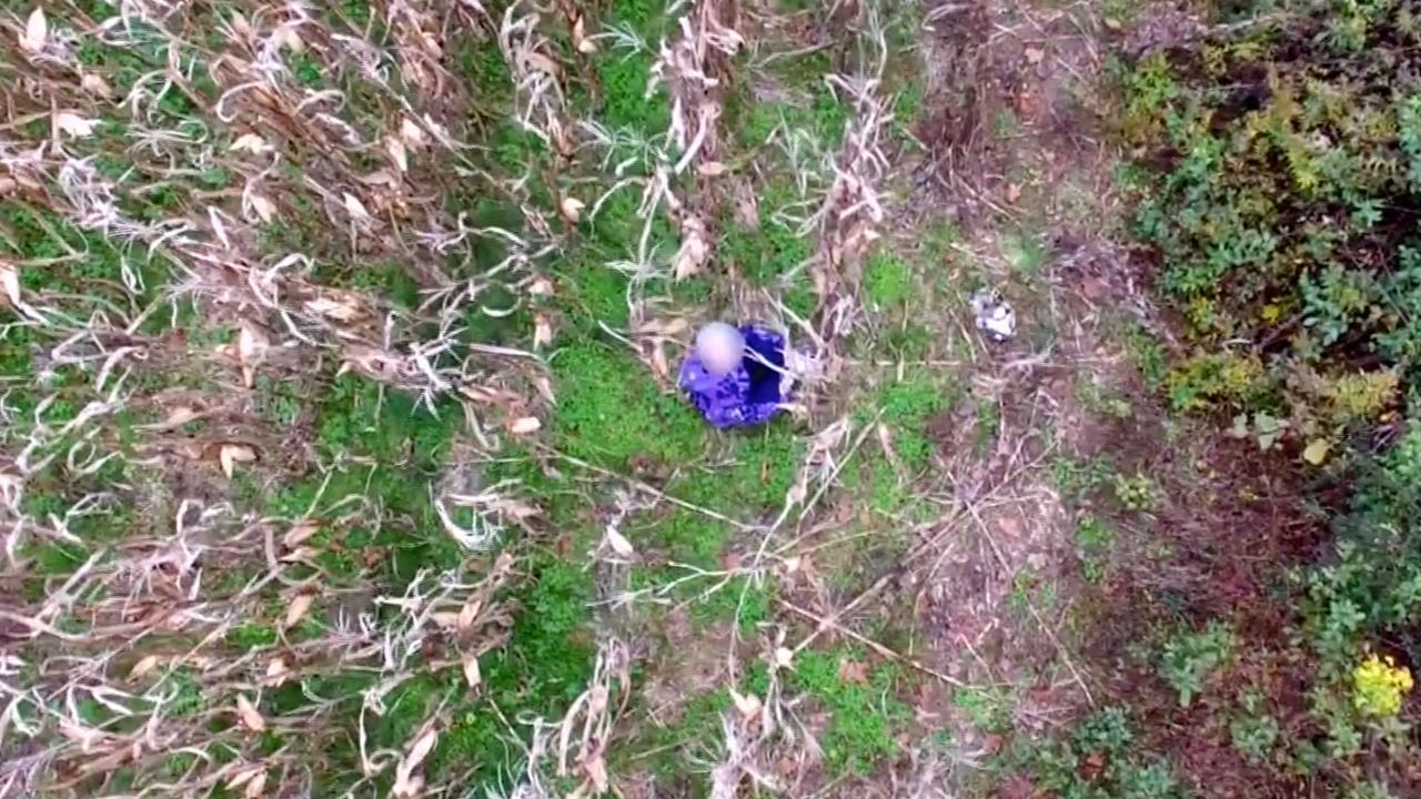 Drone in VS vindt vermiste vrouw terug in maisveld
