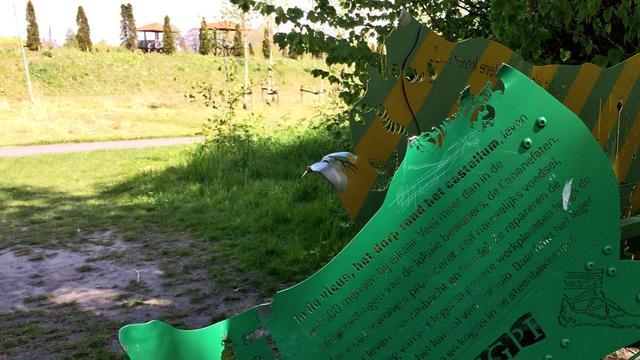 Vernielde kunstwerken Park Matilo kunnen worden hersteld