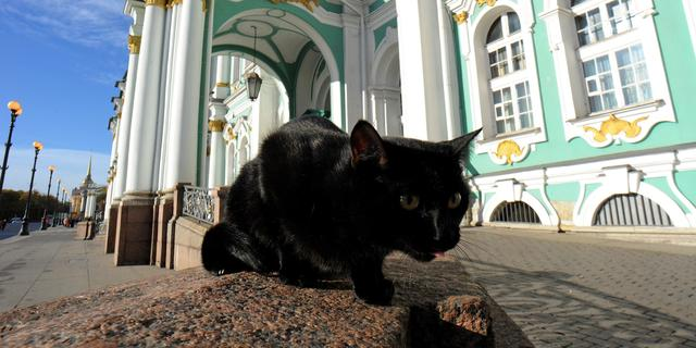 Russische priesters poseren met kat op kalender