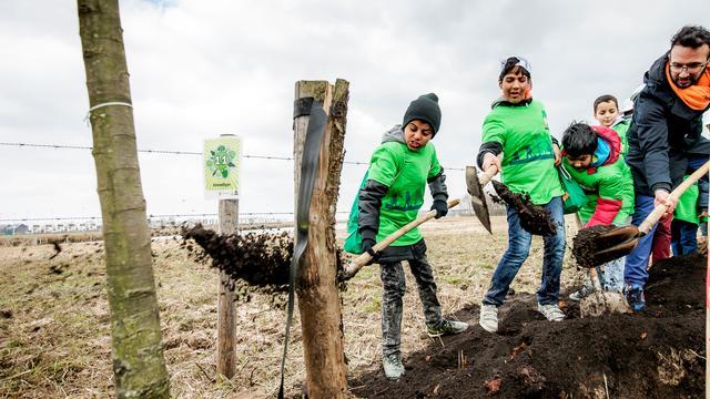 Gemeente Roosendaal gaat meer bomen planten tegen klimaatverandering