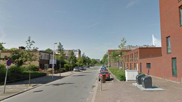 Duo in Kanaleneiland opgepakt voor bezit nepwapens en drugs