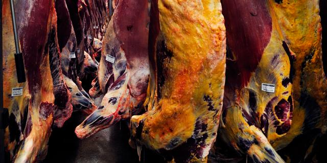 Vier jaar cel geëist in hoger beroep voor fraude met paardenvlees