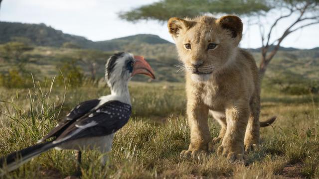 Recensieoverzicht: 'The Lion King zonder twijfel zomerhit van 2019'