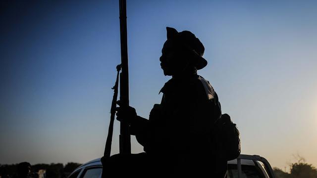 Nigeriaans leger bevrijdt 284 gijzelaars