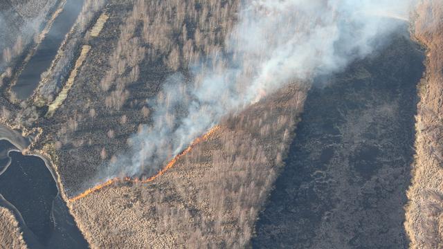Opnieuw grote brand in natuurgebied Deurnese Peel